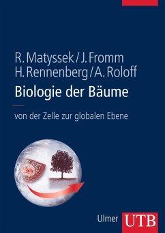 Biologie der Bäume - Matyssek, Rainer; Fromm, Jörg; Rennenberg, Heinz