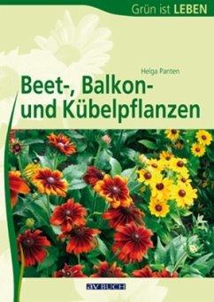 Beet-, Balkon- und Kübelpflanzen - Panten, Helga