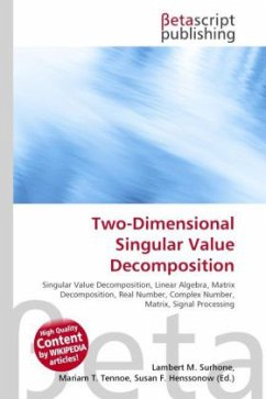 Two-Dimensional Singular Value Decomposition