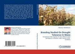 Breeding Studied On Drought Tolerance In Maize