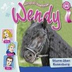 Wendy - Sturm über Rosenborg, 1 Audio-CD