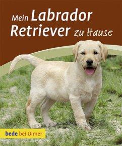 Mein Labrador Retriever zu Hause - Harms, Maike