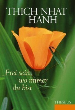 Frei sein, wo immer du bist - Thich Nhat Hanh