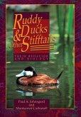 Ruddy Ducks & Other Stifftails: Their Behavior and Biology