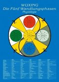 Wuxing Die fünf Wandlungsphasen - Physiologie, Tafel