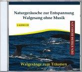 Naturgeräusche Zur Entspannung-Walgesang