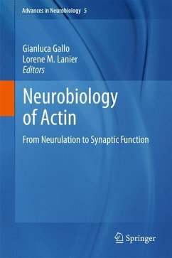 Neurobiology of Actin
