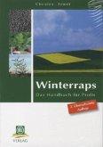 Winterraps