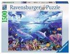 Ravensburger 16331 Lassen: Tag der Delfine