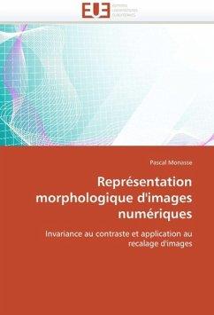Représentation morphologique d'images numériques - Monasse, Pascal