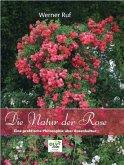 Die Natur der Rose
