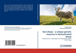 Kari sheep - a unique genetic resource in domesticated sheep - Ahmad, Sohail; Sajjad Khan, Muhammad
