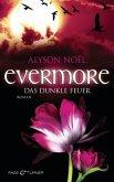 Das dunkle Feuer / Evermore Bd.4