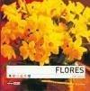 Flores en casa - Winter, Alicia