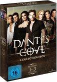 DanteŽs Cove - Collection Box