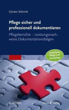 Pflege sicher und professionell dokumentieren - Schmitt, Günter