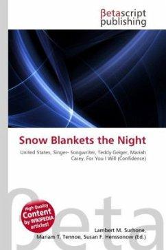 Snow Blankets the Night