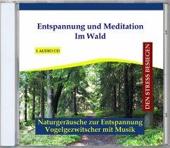 Entspannung Und Meditation Im Wald