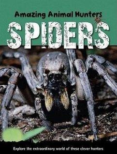 Spiders - Morgan, Sally
