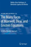 The Many Faces of Maxwell, Dirac and Einstein Equations