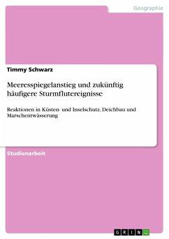 Meeresspiegelanstieg und zukünftig häufigere Sturmflutereignisse - Schwarz, Timmy