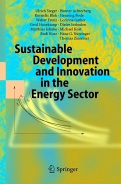 Sustainable Development and Innovation in the Energy Sector - Steger, Ulrich;Achterberg, Wouter;Blok, Kornelis