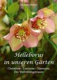 Helleborus in unseren Gärten