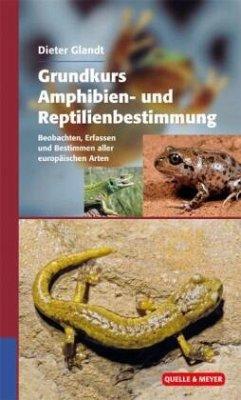 Grundkurs Amphibien- und Reptilienbestimmung - Glandt, Dieter