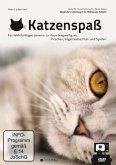 Katzenspaß: Gute TV-Unterhaltung für Deine Katze