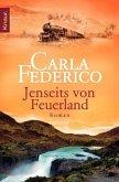 Jenseits von Feuerland / Chile-Saga Bd.2