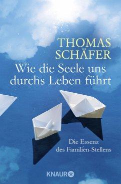 Wie die Seele uns durchs Leben führt - Schäfer, Thomas