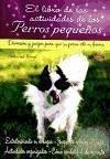 El libro de las actividades de los perros pequeños : diversión y juegos para que su perro esté en forma