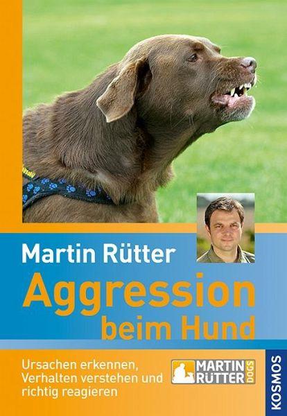 Aggression beim Hund - Rütter, Martin