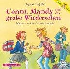 Conni, Mandy und das große Wiedersehen / Conni & Co Bd.6 (2 Audio-CDs)