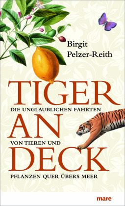 Tiger an Deck - Pelzer-Reith, Birgit