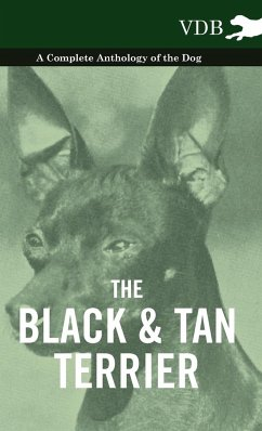The Black and Tan Terrier - A Complete Anthology of the Dog - - Various