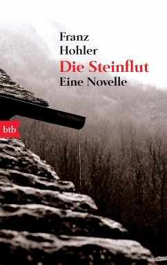 Die Steinflut - Hohler, Franz