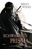 Schwarzes Prisma / Licht Saga Bd.1