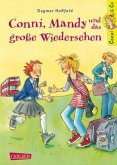 Conni, Mandy und das große Wiedersehen / Conni & Co Bd.6