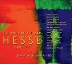 Hesse Projekt, Verliebt in die verrückte Welt, 1 Audio-CD (Sonderausgabe)