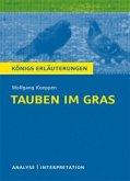 Interpretation zu Wolfgang Koeppen 'Tauben im Gras'