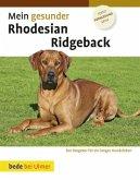 Mein gesunder Rhodesian Ridgeback