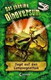 Jagd auf den Compsognathus / Das geheime Dinoversum Bd.12