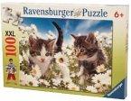 Ravensburger 10612 - Süßes Kätzchen, 100 Teile Puzzle