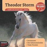 Theodor Storm, Klassiker to go, 6 Audio-CDs