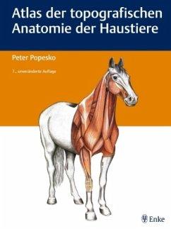 Atlas der topografischen Anatomie der Haustiere - Popesko, Peter