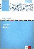 Klausurtraining: Peter Stamm 'Agnes'