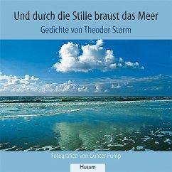 Und durch die Stille braust das Meer - Storm, Theodor