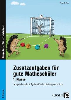 Zusatzaufgaben für gute Matheschüler 1. Klasse - Birkholz, Ralph