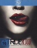 True Blood - Die komplette 1. Staffel (Blu-ray)